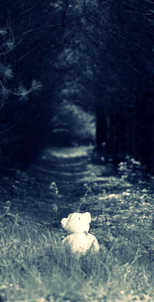 Zgubiony w lesie...