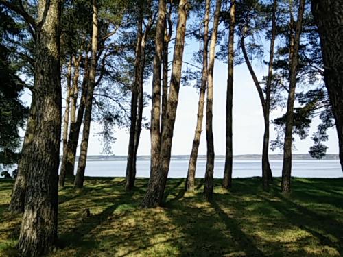 Widok na jezioro w Kruklankach