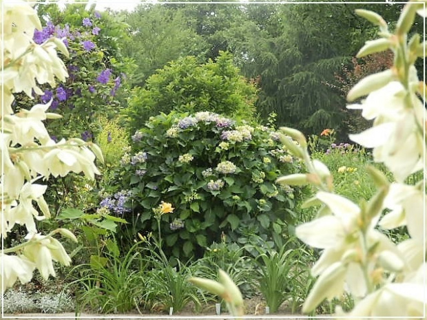 ogród-altona
