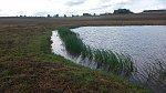 images82.fotosik.pl/214/bcb594a66560b31bm.jpg