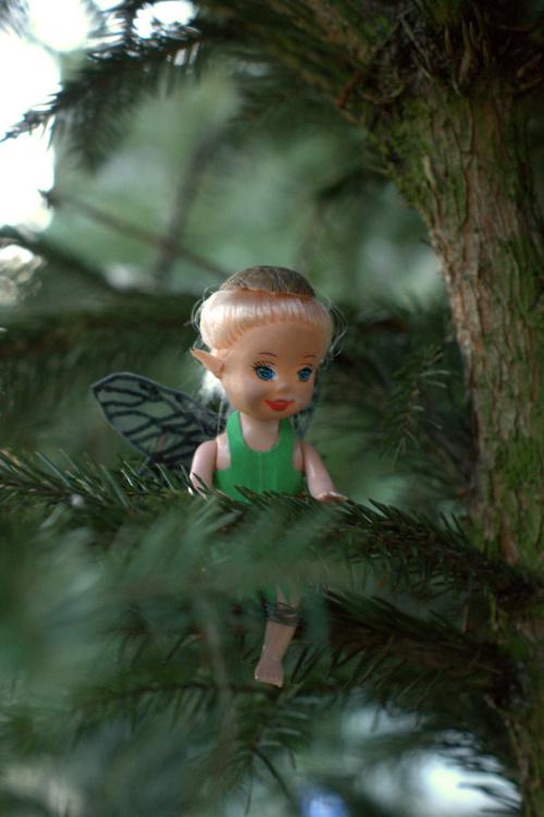 Z wizytą u Elfa.