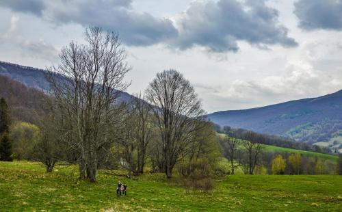 Bieszczady wiosna 2017
