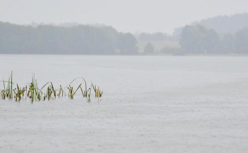 gdy nad jeziorem pada deszcz