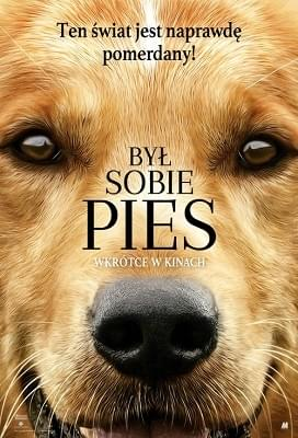 Był sobie pies / A Dogs Purpose (2017) PLDUB.480p.BDRiP.XViD.AC3-K12 / Dubbing PL