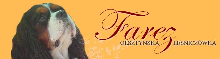 Farez Olsztyńska Leśniczówka
